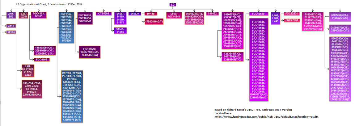 L2 Organizational chart 2
