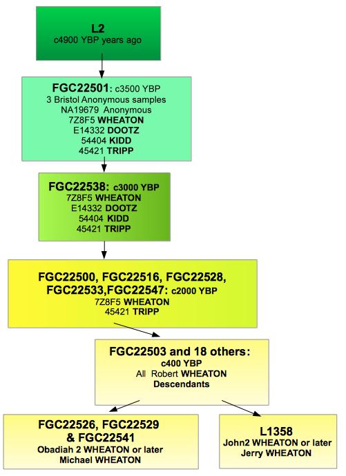 L2 descendancy chart